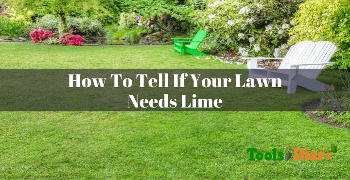 How To Tell If Your Lawn Needs Lime